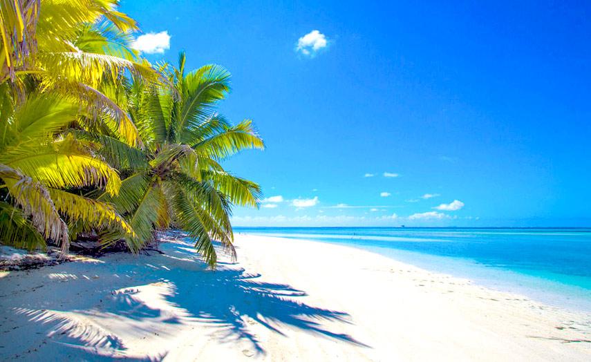 alphonse island lagunen und unber hrte natur auf den seychellen. Black Bedroom Furniture Sets. Home Design Ideas