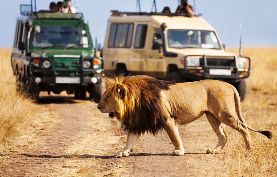 Kenya Seychellen Reisekombination