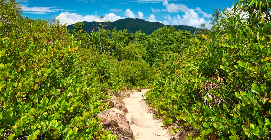 Naturausflüge Seychellen mit Kindern Wanderungen