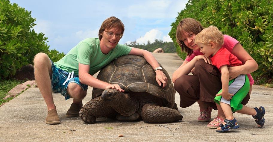 Seychellen Reisen mit Kindern zu den Riesenschildkröten