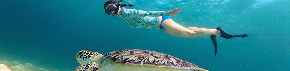 Seychellen Schnorcheln