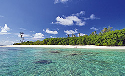 Bird Island Seychellen | Die Perfekte Insel für Naturliebhaber