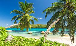 Praslin Seychellen | Infos & Angebote für die Trauminsel